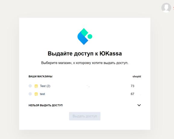 Бизнес-профиль: доступ к ЮKassa